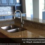 Orlando-Granite-Kitchen-Countertop-with-Undermount-Stainless-Sink